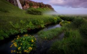 Картинка зелень, трава, цветы, горы, природа, река, ручей, водопад, Весна, Лето