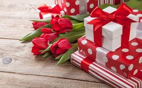 Обои цветы, праздник, подарок, тюльпаны, день влюбленных, коробочка