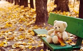 Картинка осень, игрушка, лавка, медвежонок