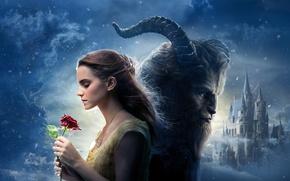 Картинка Girl, Light, Moon, Red, Fantasy, Emma Watson, Clouds, Sky, Stars, Winter, Rose, the, Snow, Female, …
