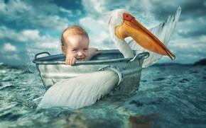 Картинка море, птица, ребёнок, таз, пеликан