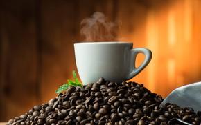 Картинка фон, кофе, пар, чашка, зёрна, совок