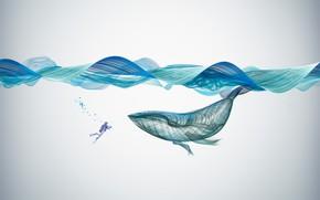 Картинка Creative, Underwater, Illustration, Graphics, Whale