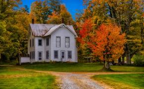 Обои США, осень, трава, дом, особняк, Нью-Йорк, деревья, Forestdale, дорога