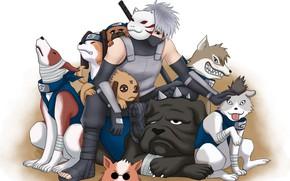 Картинка Naruto, anime, manga, Kakashi, ANBU, japonese, Naruto Shipuden