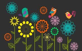 Обои цветы, птицы, рисунок