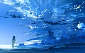 Картинка небо, девушка, облака, закат, природа, аниме, арт, loundraw