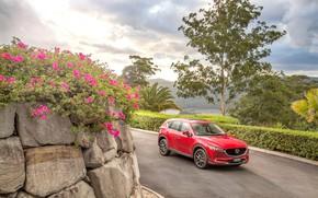 Картинка дорога, авто, цветы, красный, Mazda, CX-5, Akera