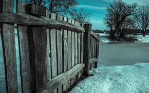 Обои дерево, забор, снег, зима