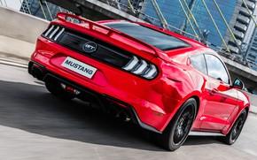 Картинка красный, скорость, Ford, вид сзади, Fastback, 2018, Mustang GT