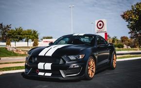 Обои Mustang, GT350, Shelby