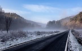 Картинка зима, дорога, природа
