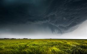 Обои поле, небо, тучи, природа, ветер, молния