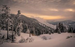 Картинка снег, горы, вечер
