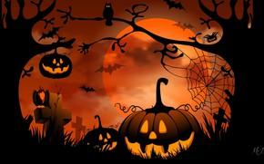Картинка ночь, праздник, тыква, Хеллоуин
