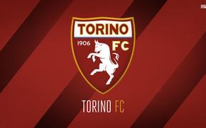 Картинка wallpaper, sport, logo, football, Italia, Torino, Serie A