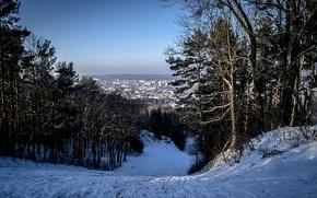 Картинка зима, снег, город, Лес, Львов