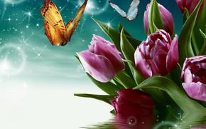 Обои бабочка, тюльпаны, вода, цветы