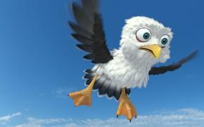 Картинка арт, полёт, птичка, bird, детская, Egor Ilyin, Gull cartoon