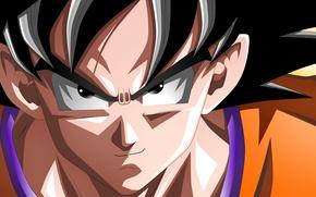 Картинка hero, asian, martial artist, warrior, japanese, Son Goku, oriental, asiatic, Dragon Ball, strong, Goku, Dragon …