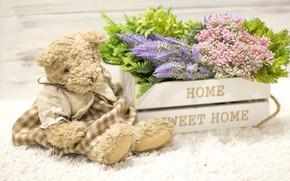 Картинка любовь, цветы, игрушка, букет, мишка, love, bear, wood, flowers, romantic, sweet, teddy, home