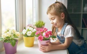 Картинка Цветы, Растение, Улыбка, Девочка