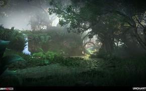 Картинка растительность, водоём, Uncharted The Lost Legacy, Intro to Western Ghats