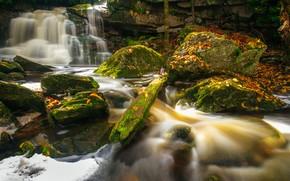Картинка осень, листья, река, камни, водопад, мох, каскад, West Virginia, Западная Виргиния, Elakala Falls, Blackwater Falls …
