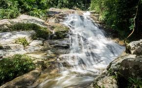 Картинка green, river, trees, nature, water, waterfall, highland, malaysia, cameron, cameronhighland