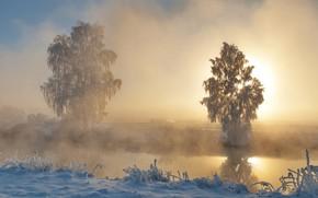 Картинка зима, иней, солнце, снег, деревья, река