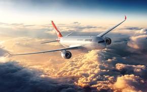 Картинка небо, облака, полёт, самолёт, Flight of the bird