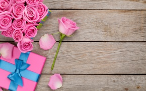 Картинка розы, love, pink, romantic, sweet, gift, petals, roses, valentine`s day