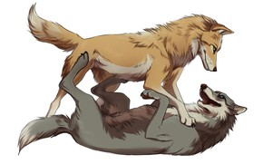 Картинка собаки, пара, белый фон