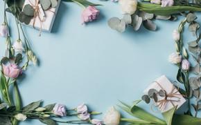 Картинка цветы, подарок, тюльпаны, white, fresh, pink, flowers, beautiful, tulips, gift, spring, эустома, tender