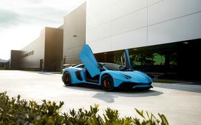 Обои Blue, Aventador, Front, Supercar, Lamborghini, LP750-4