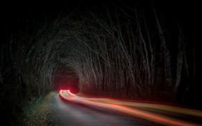 Картинка дорога, машина, ночь, огни