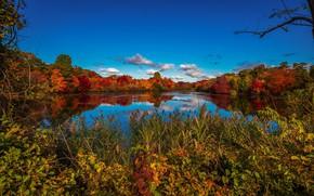 Картинка осень, небо, озеро