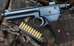 Обои 1907, Roth Steyr, патроны, пистолет