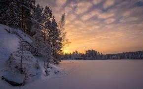 Картинка зима, лес, снег, деревья, следы, рассвет, утро, Финляндия, Finland, Тампере, Tampere, Lake Näsijärvi, Озеро Нясиярви