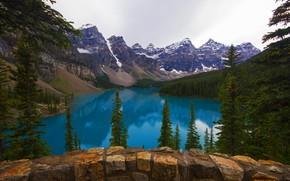 Картинка лес, небо, деревья, горы, природа, озеро