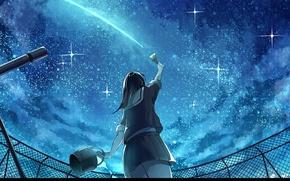 Картинка крыша, ночь, спина, ограждение, школьница, кисть, телескоп, звездное небо, ведерко