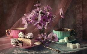 Картинка чай, торт, сахар, космея