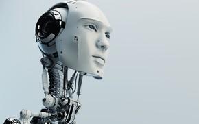 Картинка robot, head, humanoid