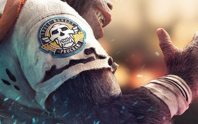 Картинка skull, game, monkey, fang, coat of arms, Beyond Good & Evil 2