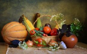 Картинка корзина, натюрморт, овощи