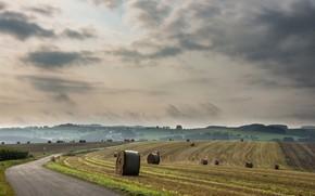 Картинка дорога, поле, сено