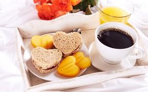 Обои тосты, завтрак, кофе, поднос, сок