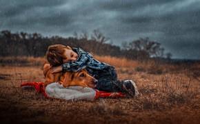 Обои дождь, собака, мальчик, друзья, дружба