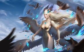 Картинка взгляд, девушка, крылья, Птицы, существо
