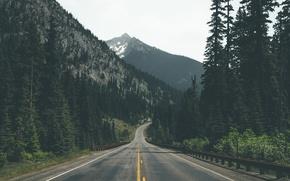 Картинка дорога, лес, деревья, горы, ели, сосны